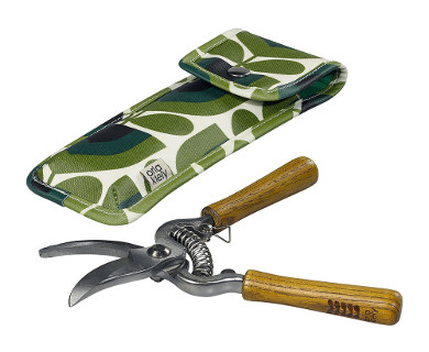 pruners-in-a-pouch-striped-tulip-841487