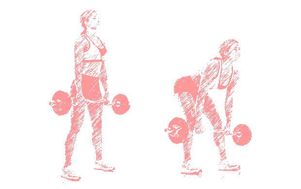 Deadlifts with Olympic bar
