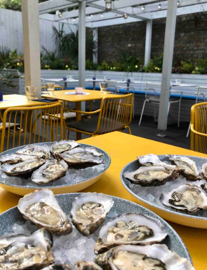 Pomona's - terrace, oysters 2 (low res)[1]